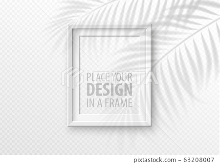 The transparent shadow overlay effect. Mockup with picture frame and overlay a palm leaf shadow. Vector illustration 63208007