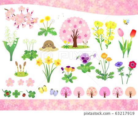 봄의 꽃과 식물 일러스트 세트 63217919