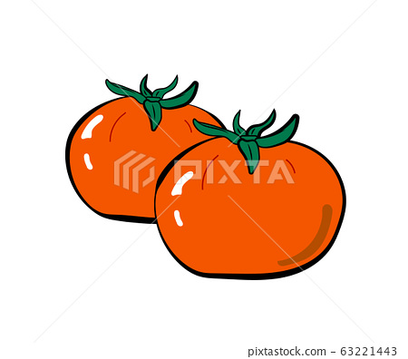 Illustration material of two simple tomatoes 63221443