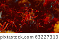 Coronavirus and virus or bacteria cell in blood stream 63227313