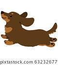 Jump Chocolate tongue miniature dachshund No main line 63232677