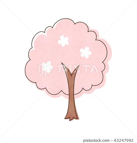 Cherry tree 63247092