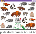 find two same animal characters game for kids 63257437