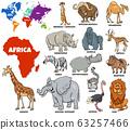 educational illustration of African animals set 63257466