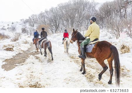 大關嶺天空牧場雪景 63273683