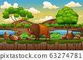 Nature scene with buffalo in the zoo open park 63274781