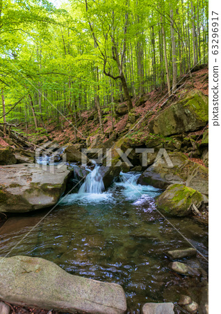 water stream in the beech forest. beautiful nature 63296917