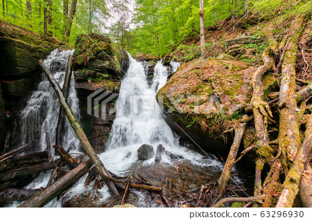 waterfall in the forest 63296930