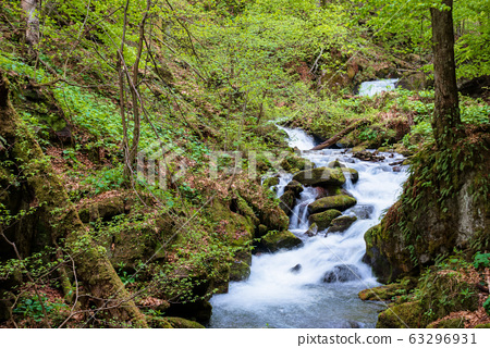 rapid water stream in the forest. powerful flow 63296931