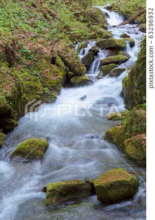 rapid water stream in the forest 63296932