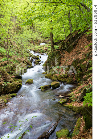 rapid water stream in the forest 63296934