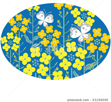 Rape blossom butterfly dark blue background oval illustration 63298090