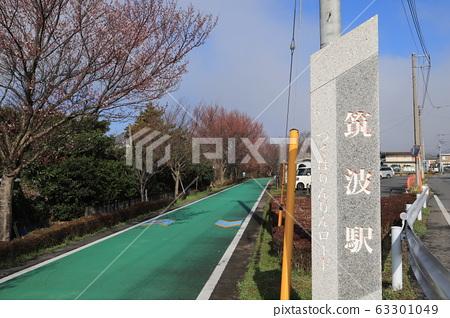 Tsukuba Kasumigaura Rin Lin Road 63301049