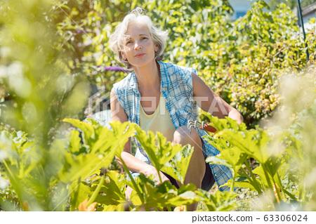 Senior woman working in her garden 63306024