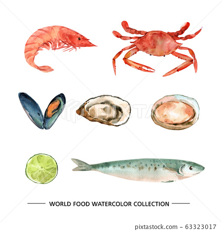 Set of isolated watercolor mackerel, oysters, mussel illustration for decorative use. 63323017
