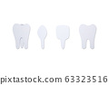 type of tooth ( incisor, canine, premolar, molar ) 63323516