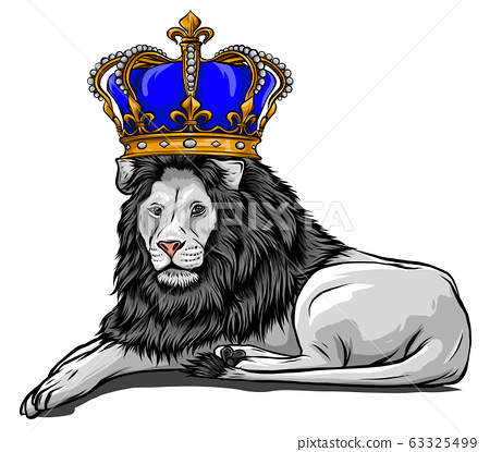 Vector Color King Lion Illustration on white background 63325499