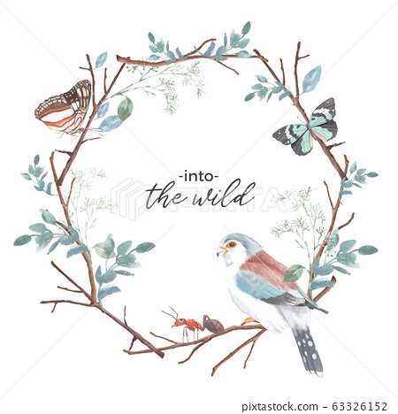 Insect and bird wreath design with butterfly, ant, 63326152