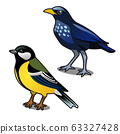 Bird blue tit and jackdaw isolated on white background. Vector cartoon close-up illustration. 63327428