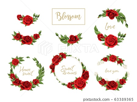 Red roses hand drawn illustration elements colored set isolated on white 63389365