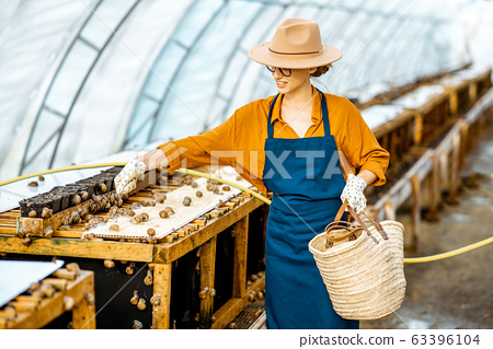 Woman working on a farm for snail growing 63396104