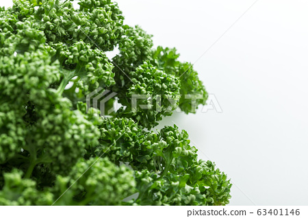 Green and yellow vegetable parsley 63401146