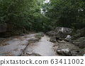 Beautiful lanscape nature in Thailand 63411002
