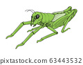 Green grasshopper on white background vector 63443532