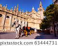 Traditional horse and carriage in front of Cathedral in Seville 63444731