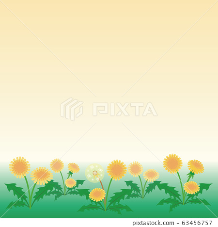 蒲公英春天花風景景觀背景複製空間 63456757