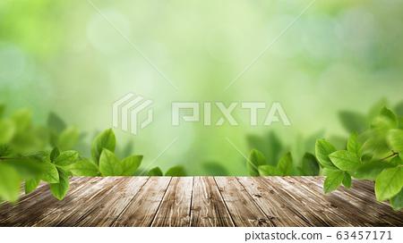天然本底綠葉啄木鳥綠色春天初夏夏天 63457171