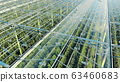 Green plantations shot through the transparent ceiling. Greenhouses aerial view, epic view on 63460683