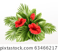 Exotic Tropical hibiscus flowers and monstera leaves, palm leaves of tropical plants isolated on white background. Vector illustration 63466217