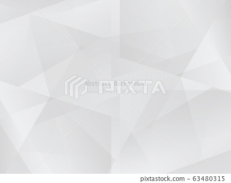 Abstract geometric white and gray polygon or 63480315