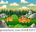 A tiger and lion families playing in the field 63481057