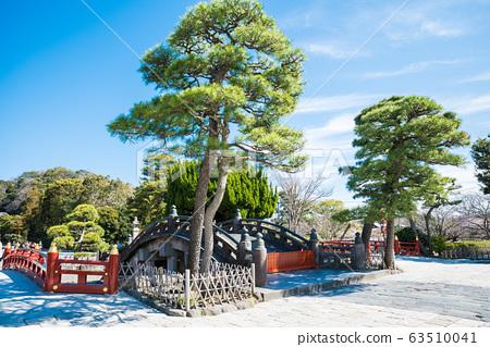 쓰루 오카 하치만 구 홍예 다리와 경내 풍경 (가나가와 현 가마쿠라시) 2020 년 3 월 현재 63510041