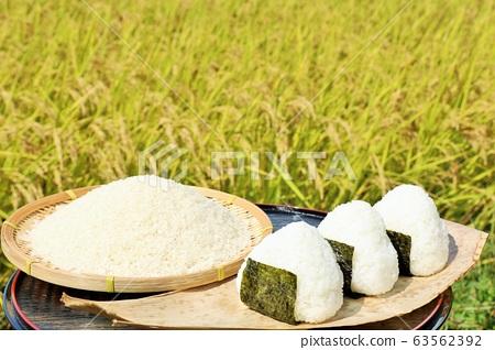 秋天米領域和碗米飯糰 63562392