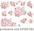 [키리누키빠스 포함] 벚꽃 63565383
