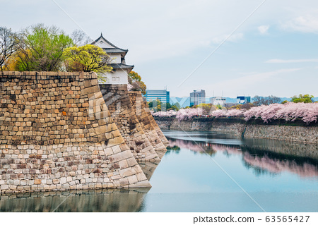 Osaka castle with cherry blossoms of spring in Japan 63565427