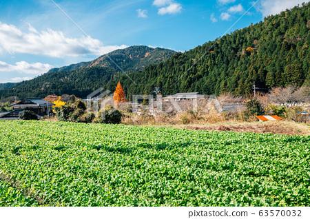 Ohara countryside village in Kyoto, Japan 63570032
