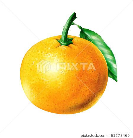 橘子手工制作 63578469