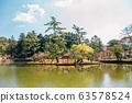 Torii gate on pond at Todai-ji temple in Nara, Japan 63578524