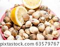 Shellfish Seafood Cockles fresh ocean gourmet 63579767