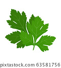 Fresh green parsley leaves on white background. 63581756