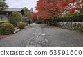 Autumn colored garden in Tenryuji temple 63591600