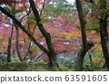 Eikando Zenrinji gardens in Kyoto, Japan 63591605