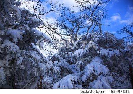 눈오는 날의 소백산의 산행, 설경, 눈꽃들...^.^ 63592831