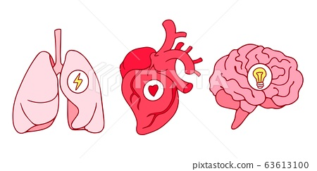 Heart & Lung Transplantation - Health Travellers Worldwide - Independent  Health Advisory | Medical Assistance & Rescue | Medical Travel | Second  Opinion | Surgeries Abroad | TeleClinics