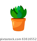 Cartoon green house plants in pots set. Leaf and flowers icon. Flowerpot isolated objects, houseplant flower pot collection. Vector illustration 63616552