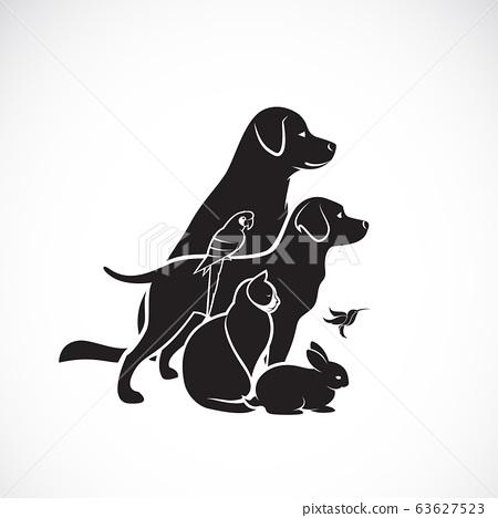 Vector group of pets - Dog, Cat, Humming bird, 63627523
